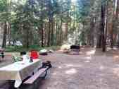 sentinel-campground-sequoia-kings-canyon-national-park-01