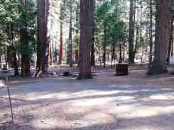 sentinel-campground-sequoia-kings-canyon-national-park-06