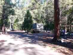 sentinel-campground-sequoia-kings-canyon-national-park-09