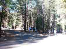sentinel-campground-sequoia-kings-canyon-national-park-12