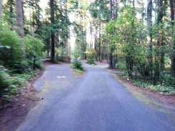 sequim-bay-state-park-campground-sequim-wa-06