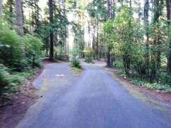 sequim-bay-state-park-campground-sequim-wa-06