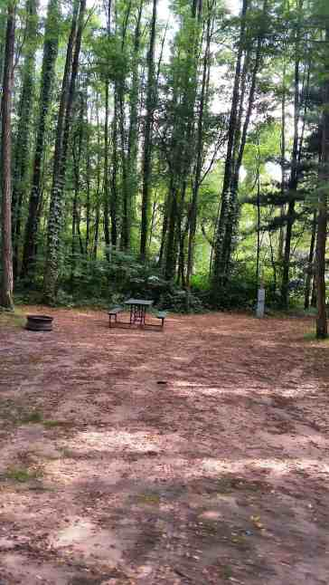 sherwood-forest-camping-rv-park-wisconsin-dells-09