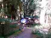 sol-duc-campground-olympic-national-park-3