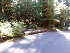 sol-duc-campground-olympic-national-park-8