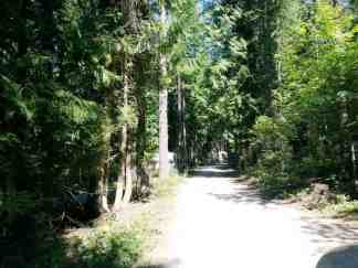 springy-point-campground-sandpoint-id-02