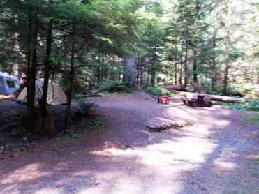 staircase-campground-olympic-national-park-0114