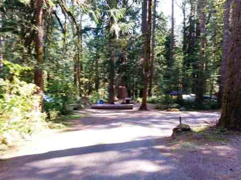 staircase-campground-olympic-national-park-0115