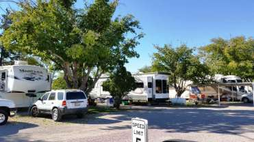 sunny-acres-rv-park-las-cruces-nm-05