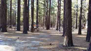 tahoe-valley-campground-pictures-07