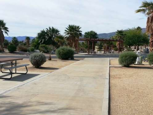the-springs-at-borrego-rv-resort-10