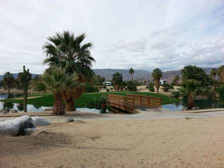 the-springs-at-borrego-rv-resort-30
