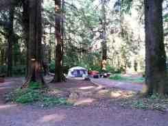 three-rivers-campground-forks-wa-06