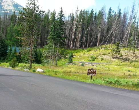 timber-creek-rocky-mountain-national-park-01