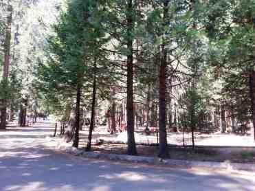 upper-pines-campground-yosemite-national-park-06