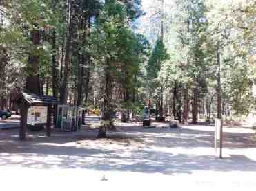 upper-pines-campground-yosemite-national-park-09