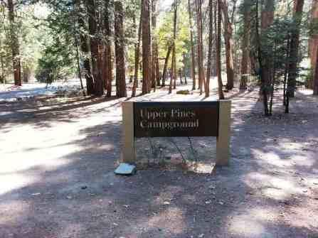 upper-pines-campground-yosemite-national-park-11