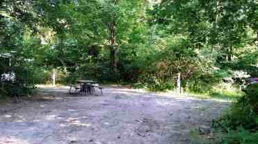 warren-dunes-state-park-campground-07