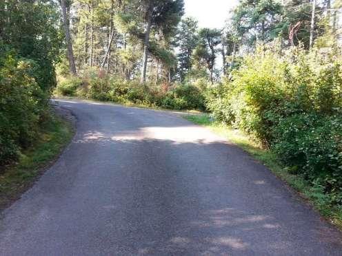 wayfarers-state-park-bigfork-montana-loop-road-slope