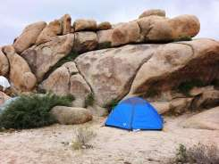white-tank-campground-joshua-tree-national-park-09
