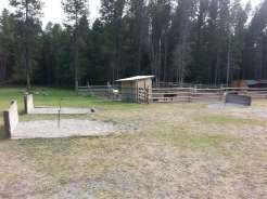 whitefish-kalispell-north-koa-whitefish-montana-petting-zoo