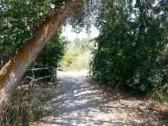 willard-bay-state-park-north-campground-ut-13