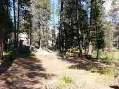 yosemite-creek-campground-yosemite-national-park-ca-09
