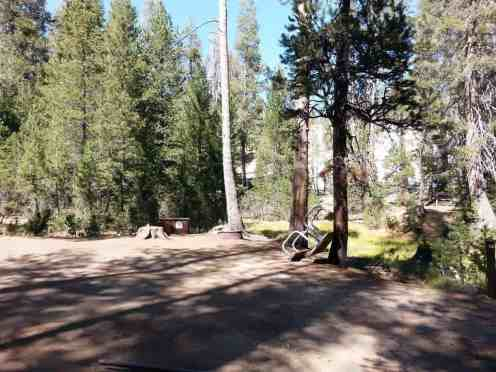 yosemite-creek-campground-yosemite-national-park-ca-13