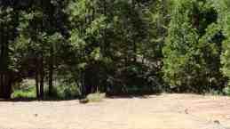 yosemite-lakes-rv-resort-12