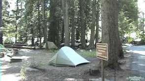 Sprague Creek Campground