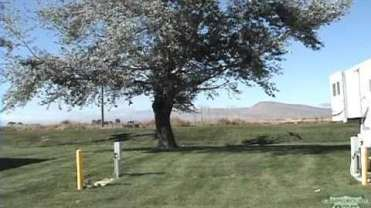 Tulelake Fairgrounds RV Campground