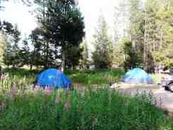 hatchet-campground-moran-wy-3