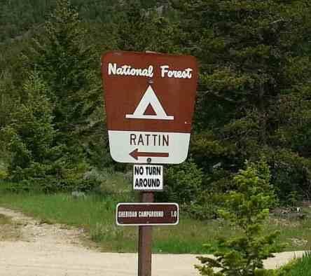 rattin-campground-red-lodge-montana