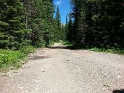 bear-creek-campground-gardiner-montana-road