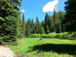 Bear Creek Campground Near Gardiner And Jardine Montana Mt