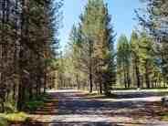 big-springs-campground-island-park-id-02