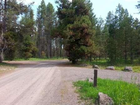 flatrock-campground-roadway