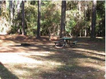 Rodman Campground near Palatka Florida Primitive Site