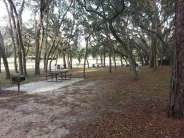 Clarcona Horse Park Campground in Apopka Florida Site in Trees