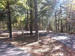 Indian Point Park Campground near Branson Missouri Spacing
