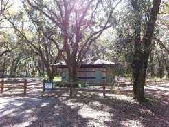 Edward Medard Regional Park Campground near Plant City Florida03