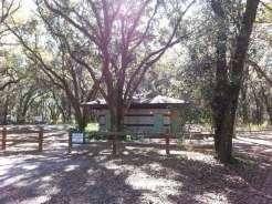Edward Medard Regional Park Campground near Plant City Florida03