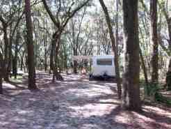 Edward Medard Regional Park Campground near Plant City Florida05