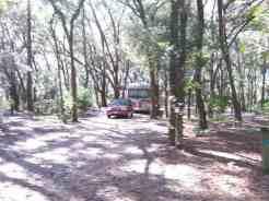 Edward Medard Regional Park Campground near Plant City Florida06