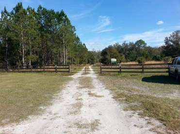 Oak Ridge Equestrian Area Campground near Thonotosassa2