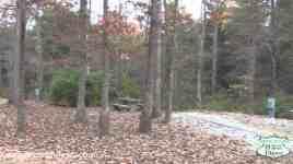 Cumberland Mountain State Park Campground