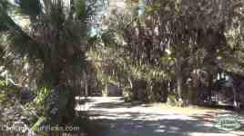 Koreshan State Historic Site Campground