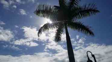 palm-beach-motorcoach-resort-jupiter-florida-06