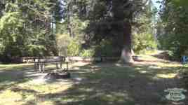 Yellow Bay State Park Campground