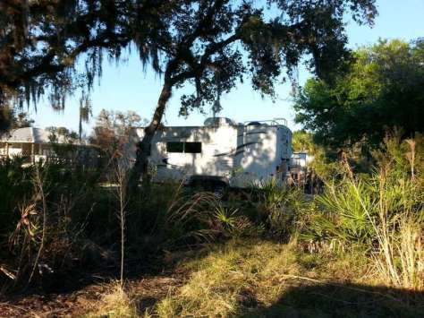 Myakka River State Park Palmetto Ridge Campground in Sarasota Florida6